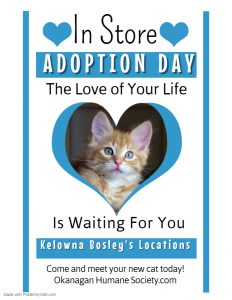 In Store Adoption Events DAILY