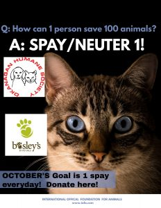 Thanks for Giving in October at Bosley's by Pet Valu